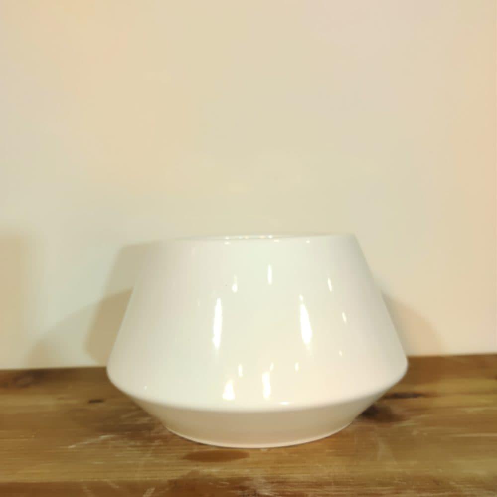macetero orquidea